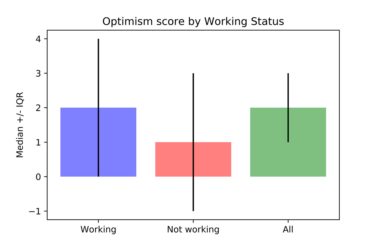 Optimism by working status